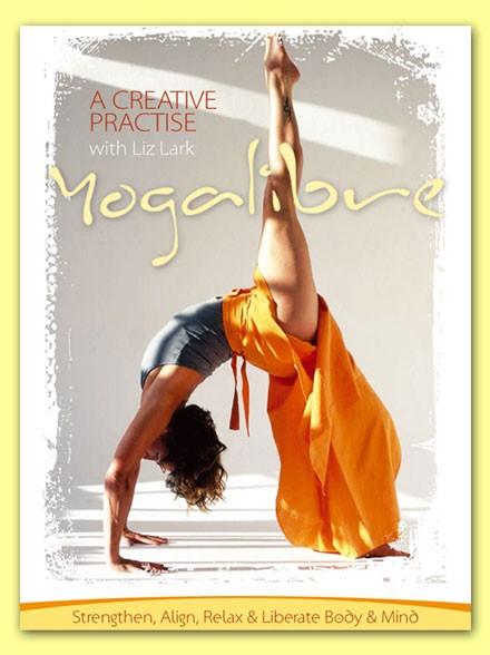 liz lark yoga dvd freestyle yoga
